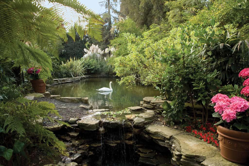 Glimpse Swan Lake at Hotel Bel-Air, Los Angeles, CA