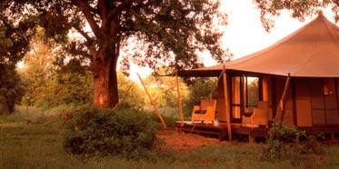 Ngala Game Reserve