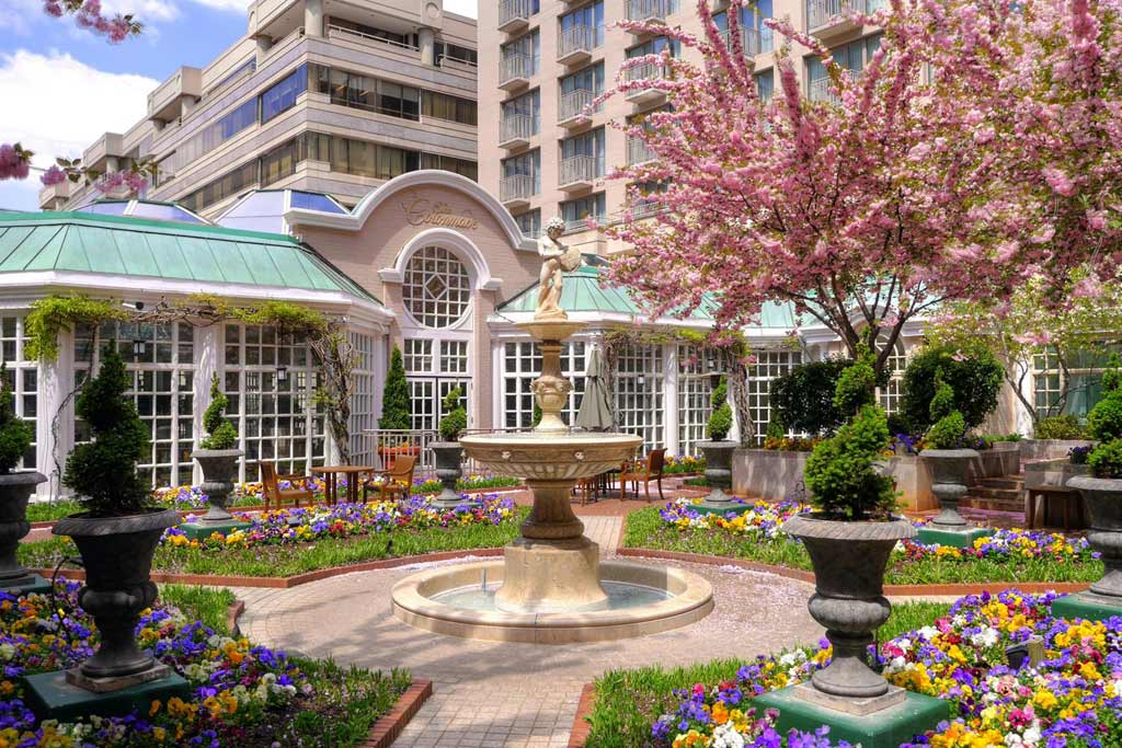 Courtyard at Fairmont Washington DCUnited States