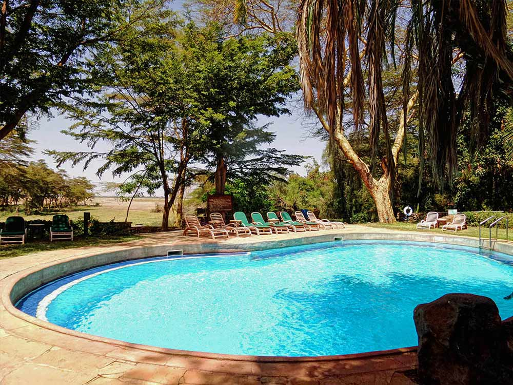 Swimming Pool at Amboseli Serena Safari Lodge, Amboseli, Kenya