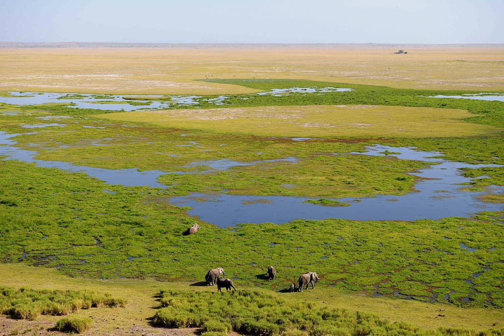 View of the marsh from Observation Hill at Amboseli Serena Safari Lodge, Amboseli, Kenya