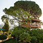 Tree House at Gran Hotel Son Net | Mallorca, Spain