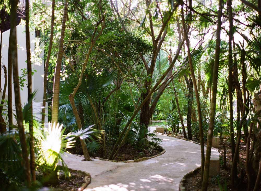 Garden Suite Walkway at Esencia, Playa del Carmen, Quinta Roo, Mexico