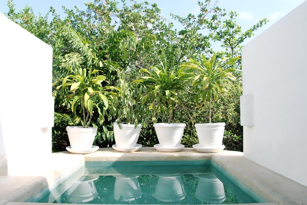 Garden Suite Plunge Pool at Esencia, Playa del Carmen, Quinta Roo, Mexico