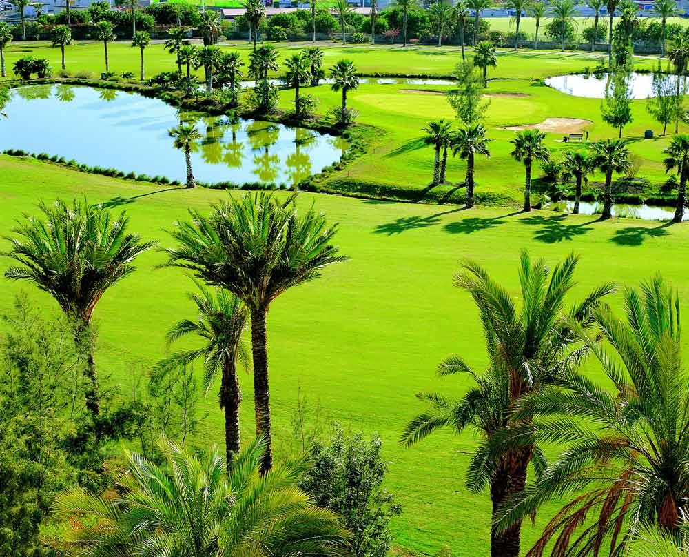 Golf at Gran Hotel Bahia Del Duque Resort