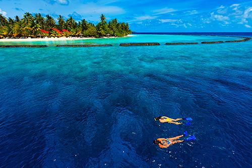 Kurumba Hotel Maldives Snorkeling