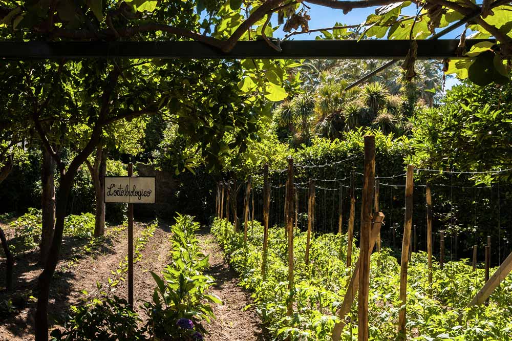 LOrto Biologieo at Grand Hotel Cocumella in SantAgnello di SorrentoItaly