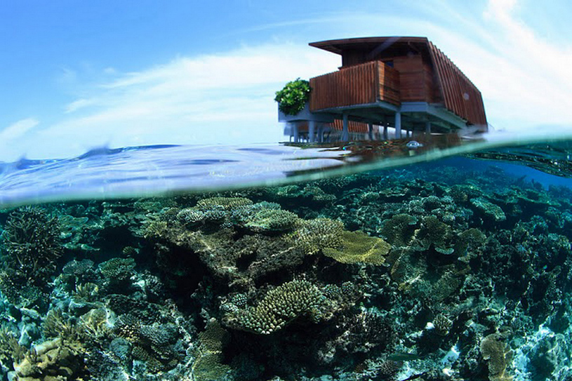Park Hyatt Maldives Hadahaa Underwater Corals Around Park Water Villas