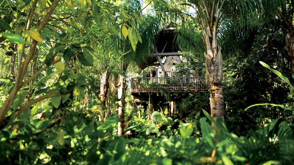 Tree House Pavilions Offering Private massages, Dorado Beach, Puerto Rico