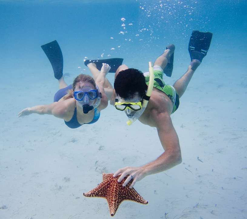 Tiamo Resort Scuba Diving with Starfish.