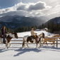 Winter Activity at Triple Creek Ranch, Derby, MT