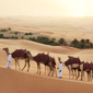 Qasr Al Sarab Desert Resort by Anantara, United Arab Emirates