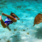 Snorkeling Activity at Turtle Inn, Stann Creek District, Belize