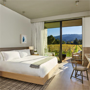 Deluxe Vineyard View King Guest Room at Las Alcobas Napa Valley, St. Helena, CA