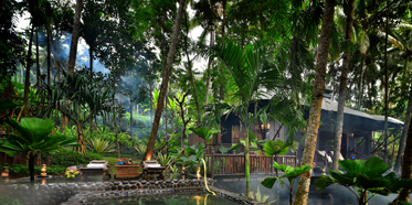 Private Salt Water Pool at Capella Ubud, Indonesia