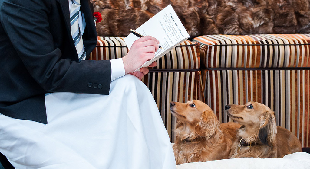 Dogs at The Chesterfield Mayfair