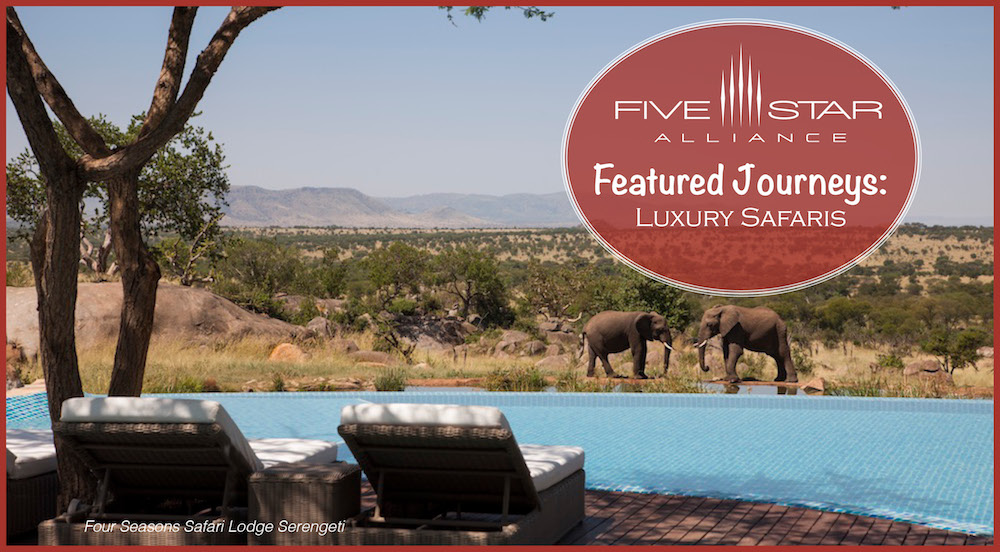 Featured Journeys: Luxury Safaris