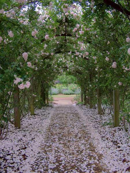 Barnsley Gardens Resort