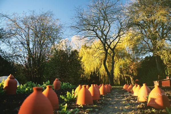 The lovely grounds at Le Manoir Aux Quat Saisons