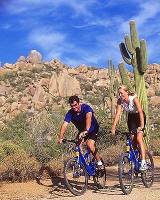 Desert Biking