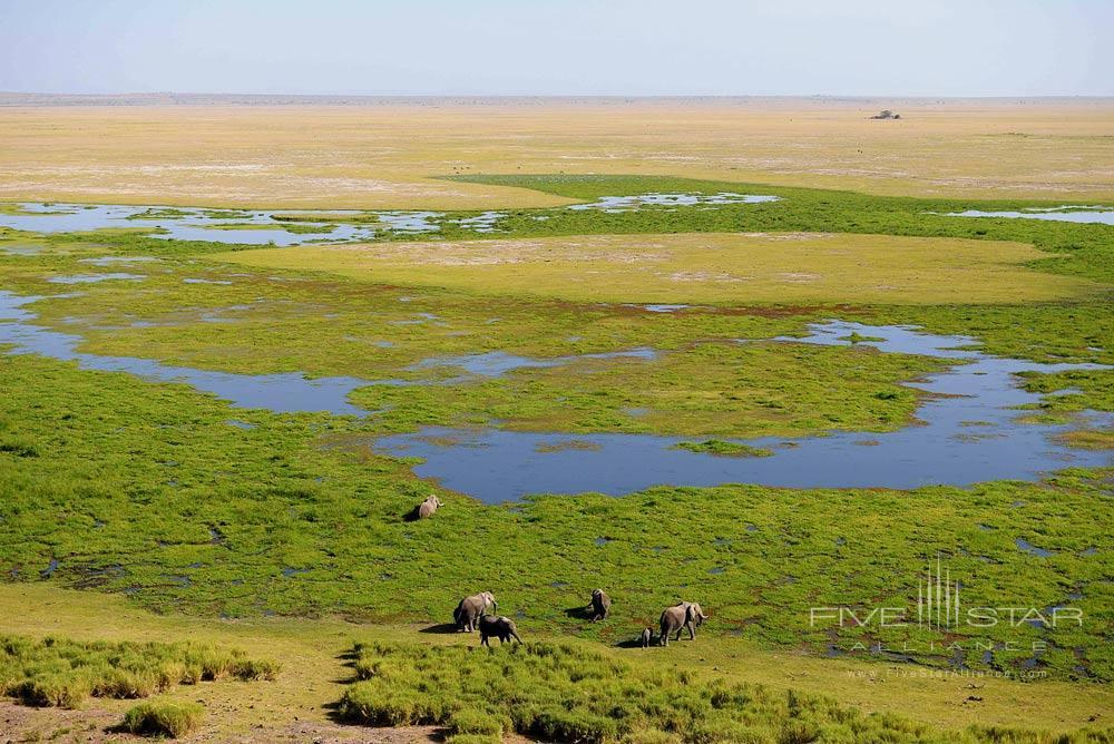 View of the marsh from Observation Hill at Amboseli Serena Safari LodgeAmboseliKenya