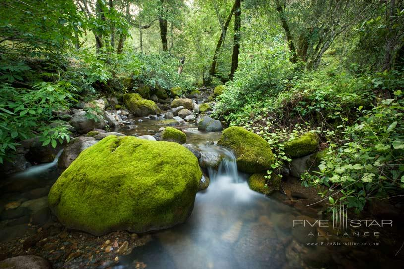 Resort Stream at The Calistoga Ranch