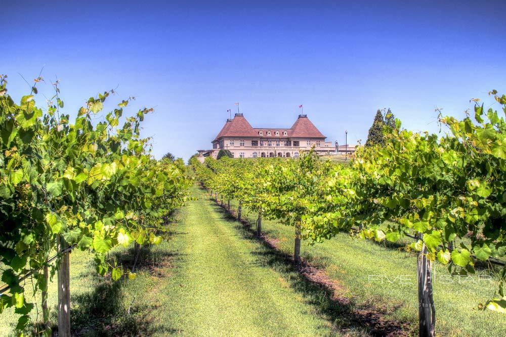 Winery Vineyard at Chateau Elan Winery and ResortBraseltonGA