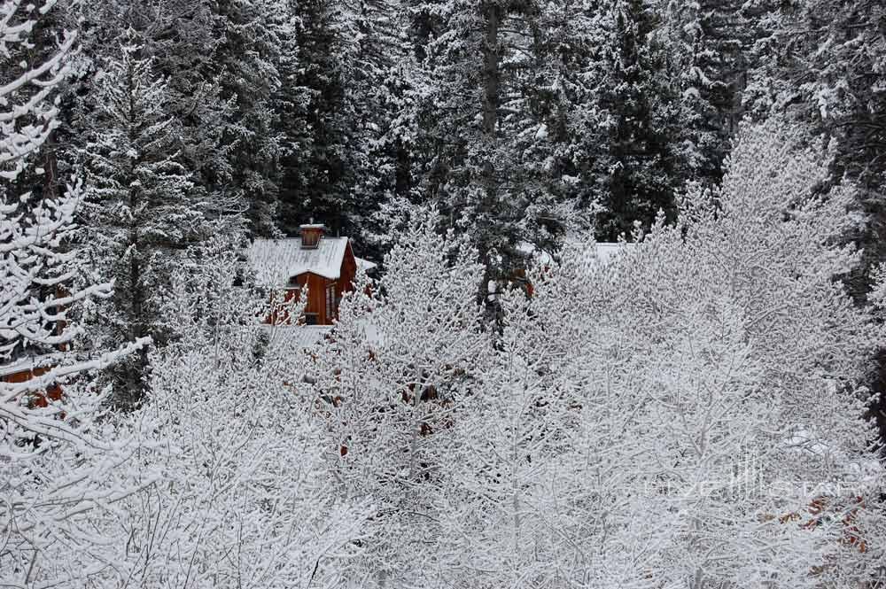 Cabin exterior at Sundance Resort, Utah