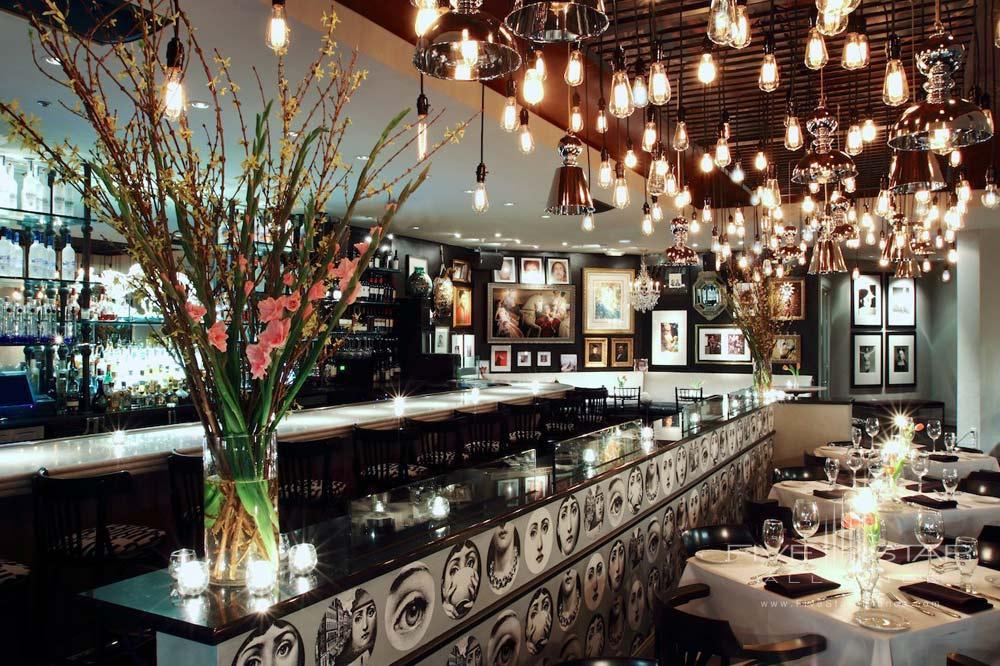 Drangonfly Restaurant at Hotel Zaza DallasTexas