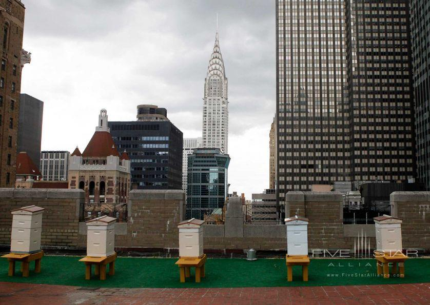 The Waldorf-Astoria New York Bee Hives on the 20th Floor Terrace