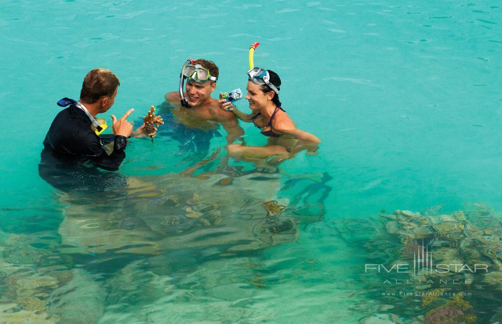 Snorkeling at Four Seasons Resort Bora BoraFrench Polynesia
