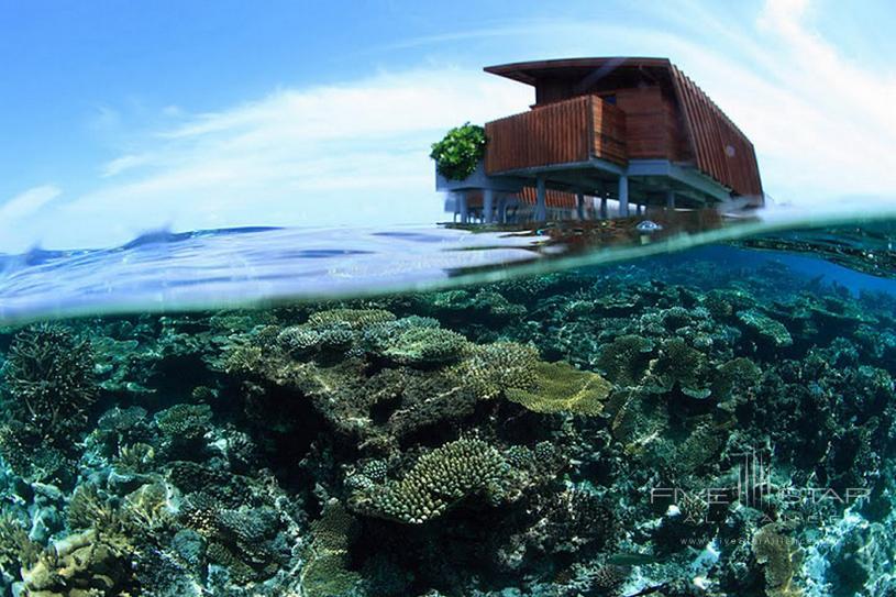 Park Hyatt Maldives Hadahaa Underwater Corals Around Park Water Villas