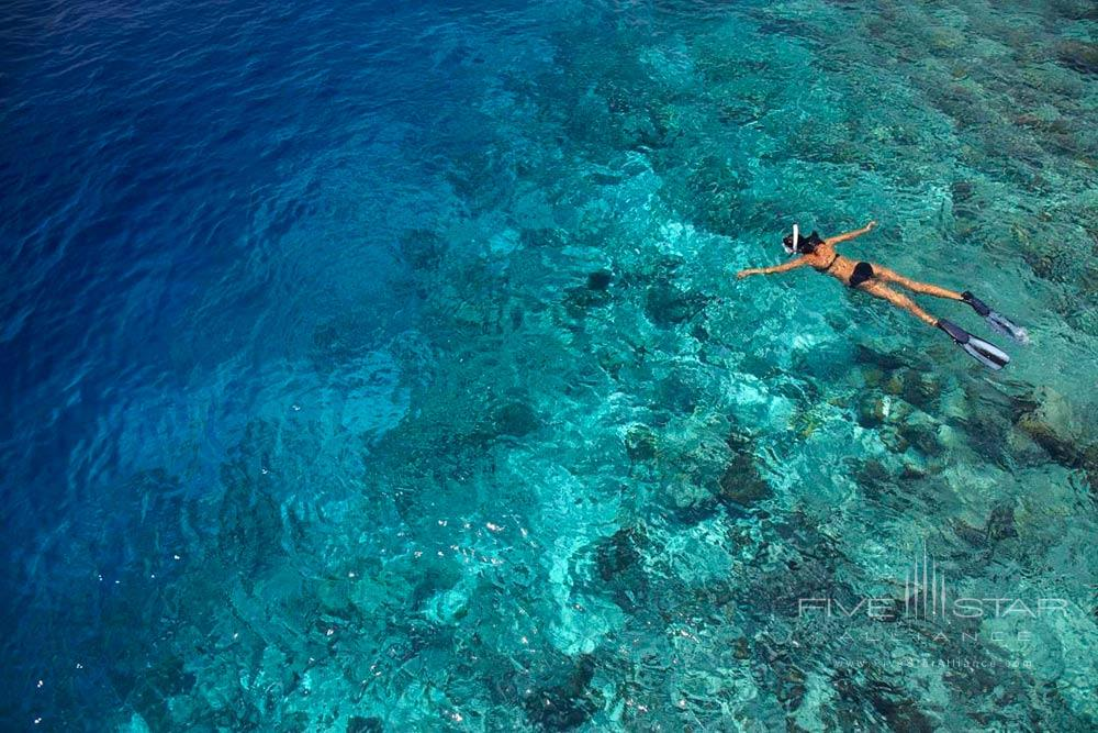 House Reef Snorkeling Activity at Dusit Thani Maldives