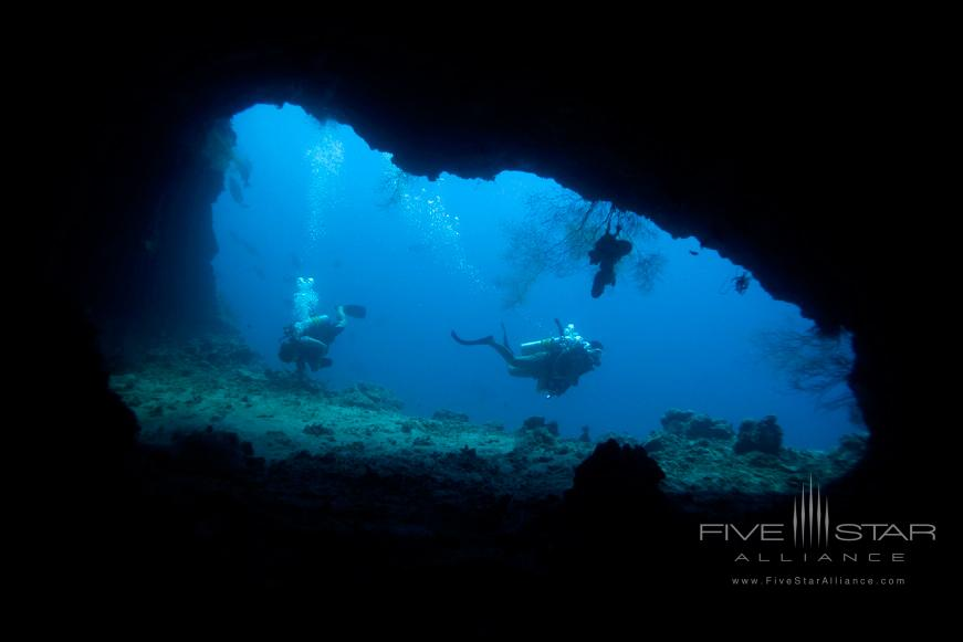 Dive the House Reef Cave at Dusit Thani Maldives