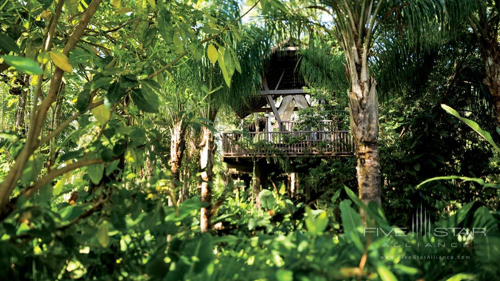 Tree House Pavilions Offering Private massagesDorado BeachPuerto Rico