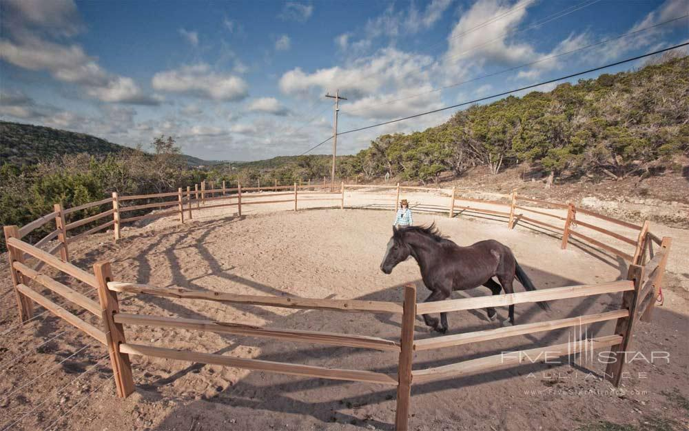 Equine Experience at Travaasa Austin