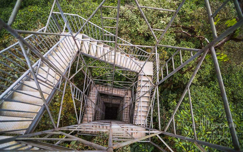 Get a good look from this 26m observation tower located in The Choco Rainforest Mashpi Lodge, Ecuador