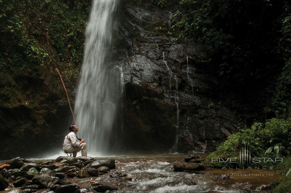 Fish in The Choco RainforestMashpi Lodge, Ecuador