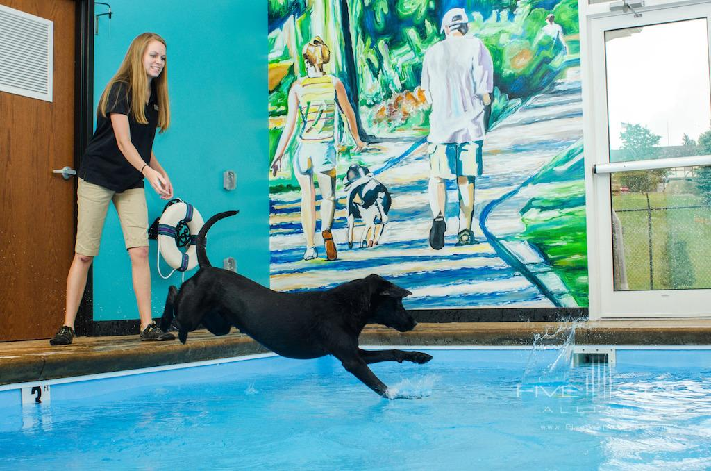 Nemacolin Wooflands Pet Resort