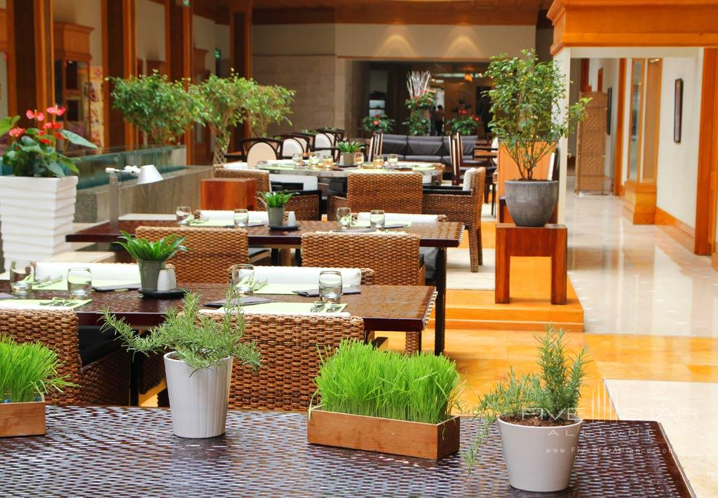 Dine at Radisson Blu Hotel Dubai Deira Creek, United Arab Emirates