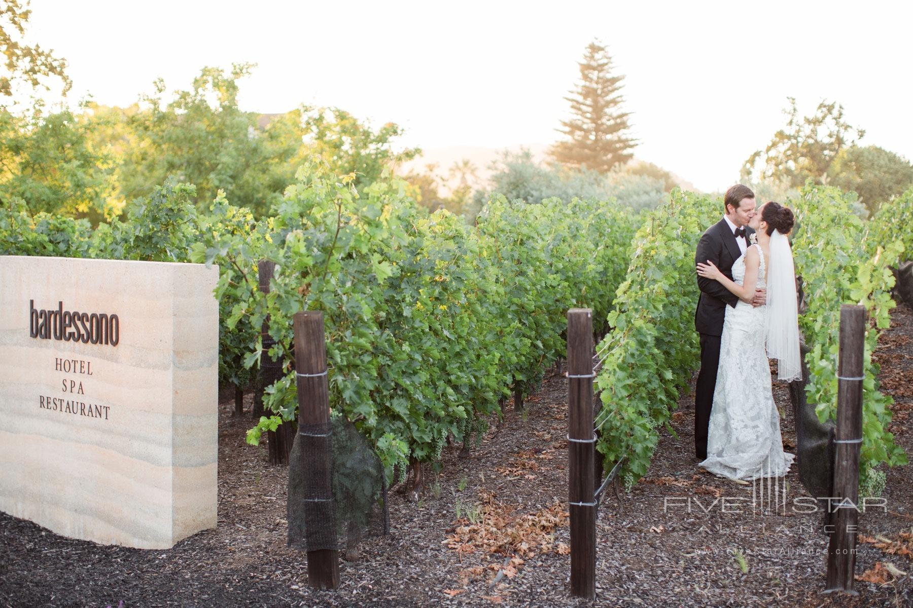 A vineyard wedding at Bardessono in Yountville, Napa Valley