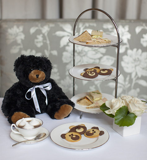 Rittenhouse Hotel Teddy Bear Tea