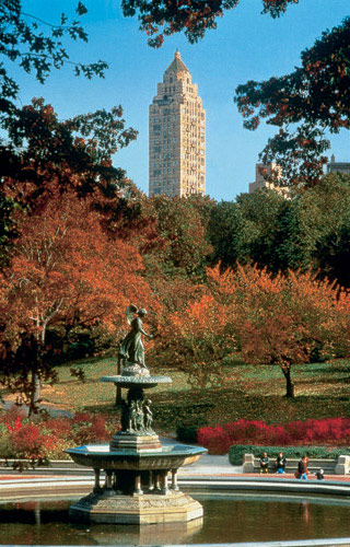 New york hotels near central park five star alliance for Hotels near central park new york