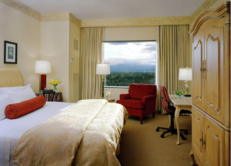 King size, Mountain View Guestroom