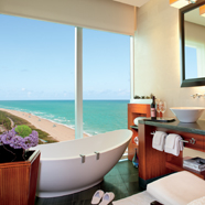 Ritz Carlton Bal Harbour Bath With A View.