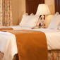 Double Guest Room at The Churchill Washington DC